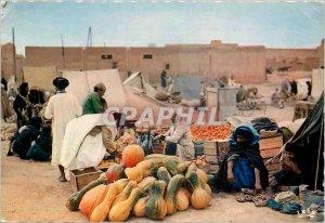 Modern Postcard Scenes et Types Guelmim Souk Day