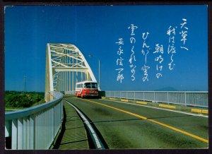 The Second Bridge,Amaksusa National Park,Japan BIN