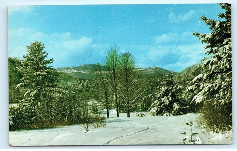 *Winter Vista Eastern Slope Region White Mountains New Hampshire NH Vintage B73