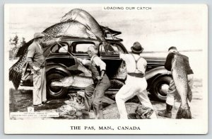Le The Pas MB~Four Men Load Exaggerated Fish Catch Onto A 1940s Automobile~1954