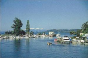 New Zealand Taupo The Boat Harbour