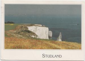 Handfast Point, Studland, Dorset, 1993 used Postcard