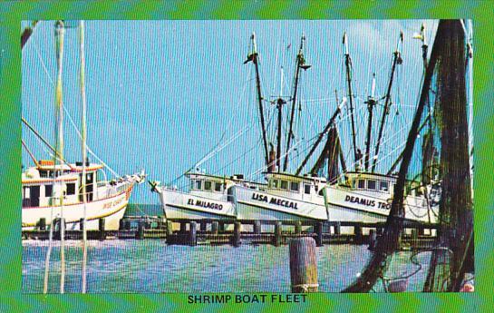 Typical Shrimp Fleet Gulf Coast Of Texas