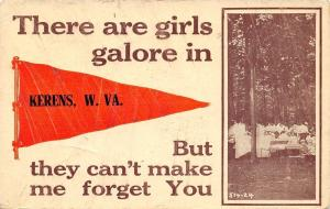 Girls Galore in Kerens West Virginia~Ladies Picnic~Won't Forget~1913 Postcard