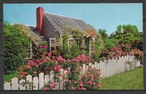 Massachusetts, Nantucket - Rose Covered Cottage - [MA-268]