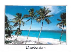 Barbados. Beautiful photo of a beautiful place. 2007.