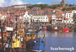 Postcard SCARBOROUGH Fishing Boats in the Harbour North Yorkshire D13
