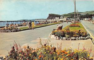 B104230 the promenade teignmouth devon    uk