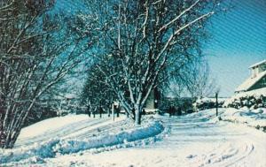 Canada Ontario Kingsway College Winter Scene Oshawa