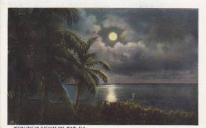 Florida Miami Moonlight On Biscayne Bay