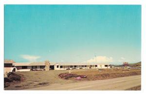 CA San Simeon Piedras Blancas Coast Motel California Postcar
