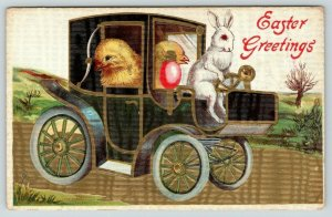 Easter Fantasy~White Rabbit Drives Chicks in Auto Hansom Cab~Gold Texture~Emboss