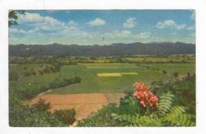 Aerial View, Sugar Estate, Jamaica, B.W.I, PU-1965