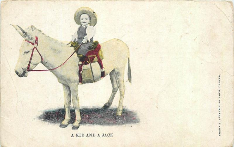 A Kid and a Jack donkey early postcard