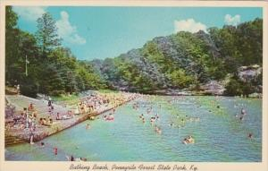 Kentucky Dawson Springs Bathing Beach & Lake Pennyrile Forest State Park