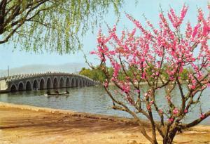 China Postcard, Bridge and Spring Time at Kwanming Lake W95