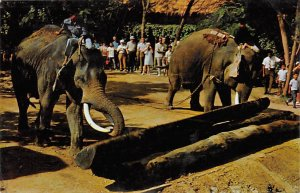Thai Elephants pushing the Log with their trunks Elephant 1928 Missing Stamp