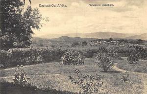 Tanzania German East Africa, Deutsch-Ost-Afrika, Muhesa in Usambara