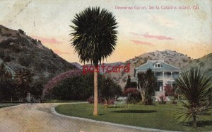 c1910 SANTA CATALINA ISLAND Descanso Canon Canyon, publ Newman, pm Pico Heights