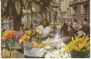 CAPE TOWN Flower VEnders , South Africa , PU-1960