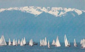 Sailboats and the Olympic Mountains, Victoria, British Columbia, Canada, 40-60s