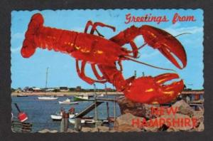 NH Greetings from NEW HAMPSHIRE Postcard PC Lobster