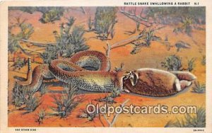 Rattle Snake, Rabbit 1944