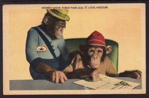Monkey Show Forest Park Zoo St Louis MO Chimpanzee PC  5200