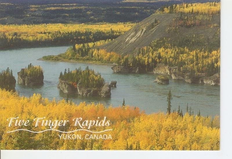 Postal 042025 : Five Finger Rapids. Yukon Canada