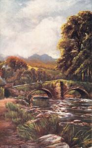 BEDDGELERT GWYNEDD WALES-BRIDGE-TUCK PICTURESQUE NORTH WALES SERIES POSTCARD