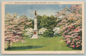 Valley Forge Pennsylvania~Dogwood Blossoms New Jersey Monument~Linen Postcard