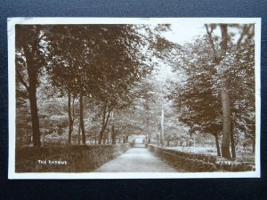 Yorkshire Bradford WYKE The Avenue c1921 RP Postcard