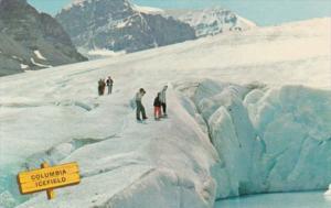 Canada Columbia Icefields Canadian Rockies Alberta