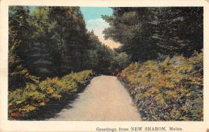New Sharon Maine Greetings Road Scenic Vintage Postcard JD933992