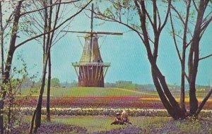 De Zwaan Windmill Holland Michigan