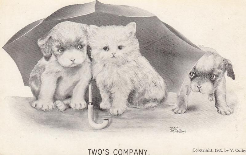 Cat & 2 puppy dogs , 1909