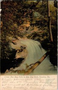 Nay Aug Falls, Nay Aug Park, Scranton PA Undivided Back c1906 Vtg Postcard M26