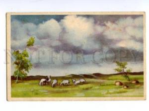 132718 ESTONIA KAUNIS Vintage postcard