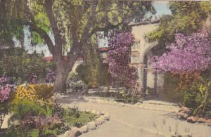Front Mission Garden and Old Chapel Arches Old Mission San Juan Capistrano Ca...