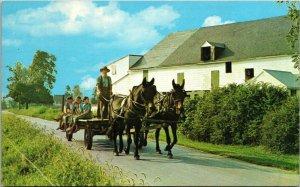 Postcard PA Pennsylvania Lancaster Amish Country Mules Wagon Children Barn