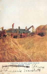 Harvesting Great Wheat Fields Of Manitoba, Canada Farming Tractor 1910s Postcard
