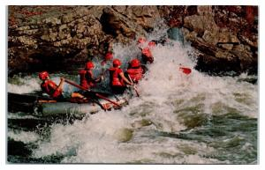 New River Adventures, Rafting on New and Gauley Rivers, Lansing, WV Postcard
