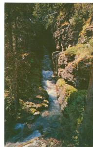 Sunrift Gorge & Baring Creek, Glacier National Park Postcard