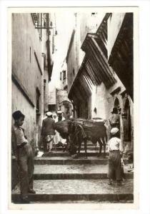 RP, Street Scene, Casbah, Rue N'Fissah, Alger, Algeria, Africa, 1920-1940s