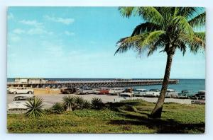 Postcard FL Lake Worth New Fishing Pier 1950's Old Cars E20