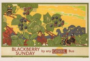 Blackberry Sunday 1920s London Transport Bus Advertising Postcard