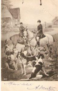 Hunting Scene. Horses Nice vintage Italian postcar