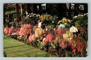 Wilmington DE- Delaware, Longwood Gardens, Chrome Postcard