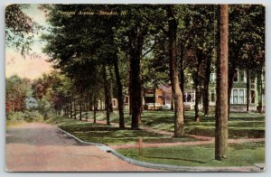 Streator Illinois~Pleasant Avenue Homes~Big Houses Set Back From Road~1909 PC