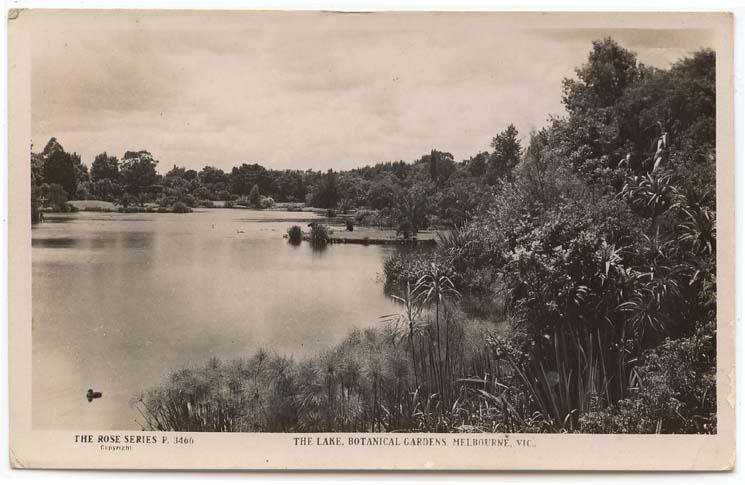 RPPC,  Melbourne, Vic., Aust., View in Botanical Garden